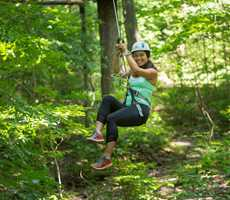 Treetop courses at Arbraska