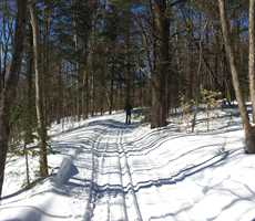 Cross-country skiing in Brandon trails